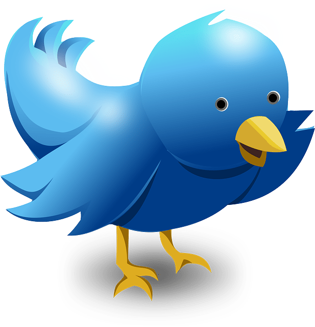 Twitter Cards – What, Why, How