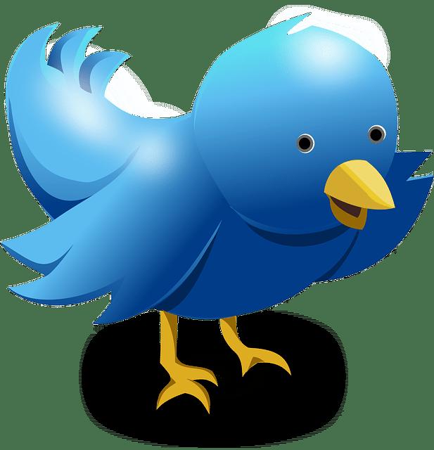 Twitter Cards Social Media Setup