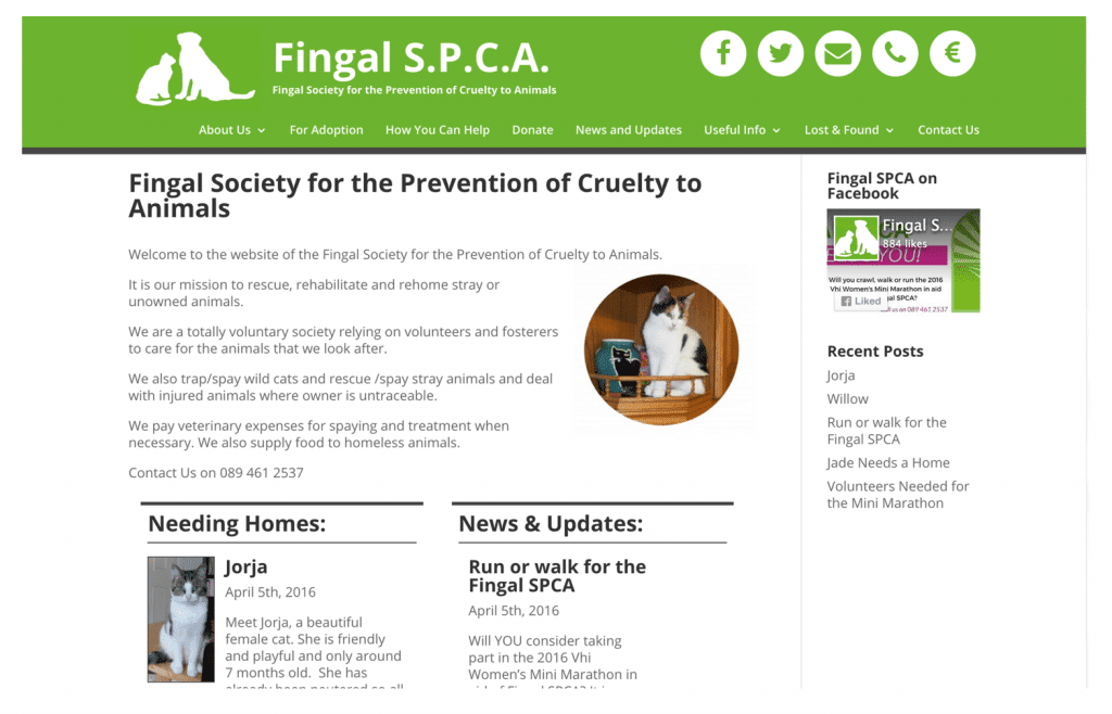 Fingal SPCA Web Design