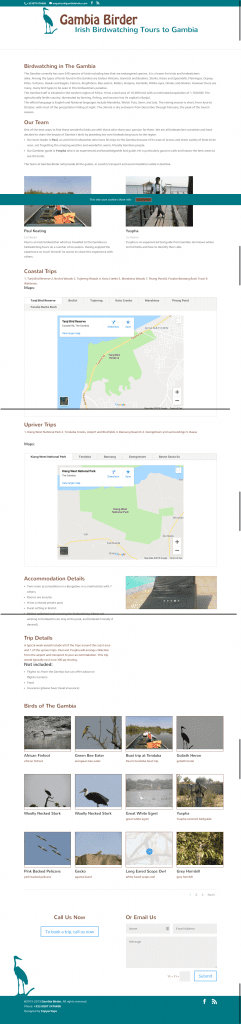 Gambia Birder web design