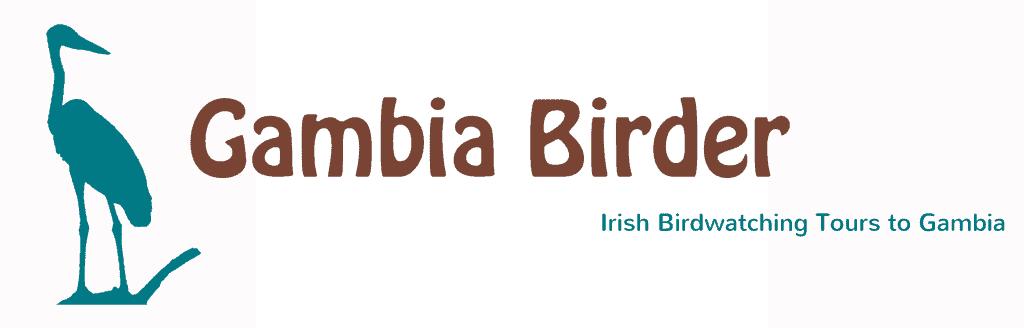 Gambia Birder logo design