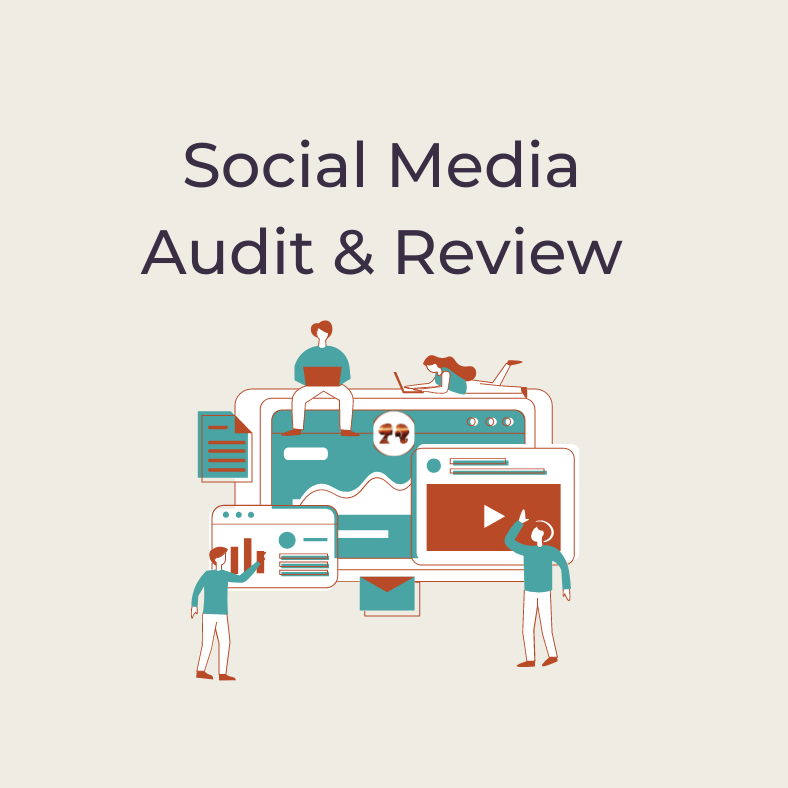 Social Media Audit and Review